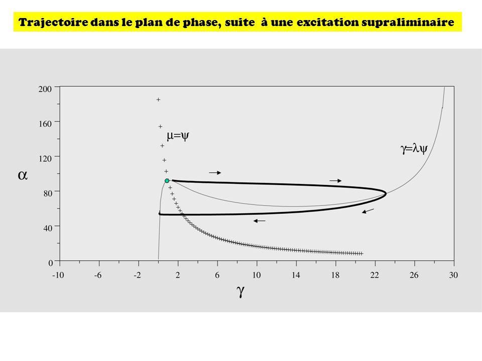 Trajectoire dans le plan de phase, suite à une excitation supraliminaire