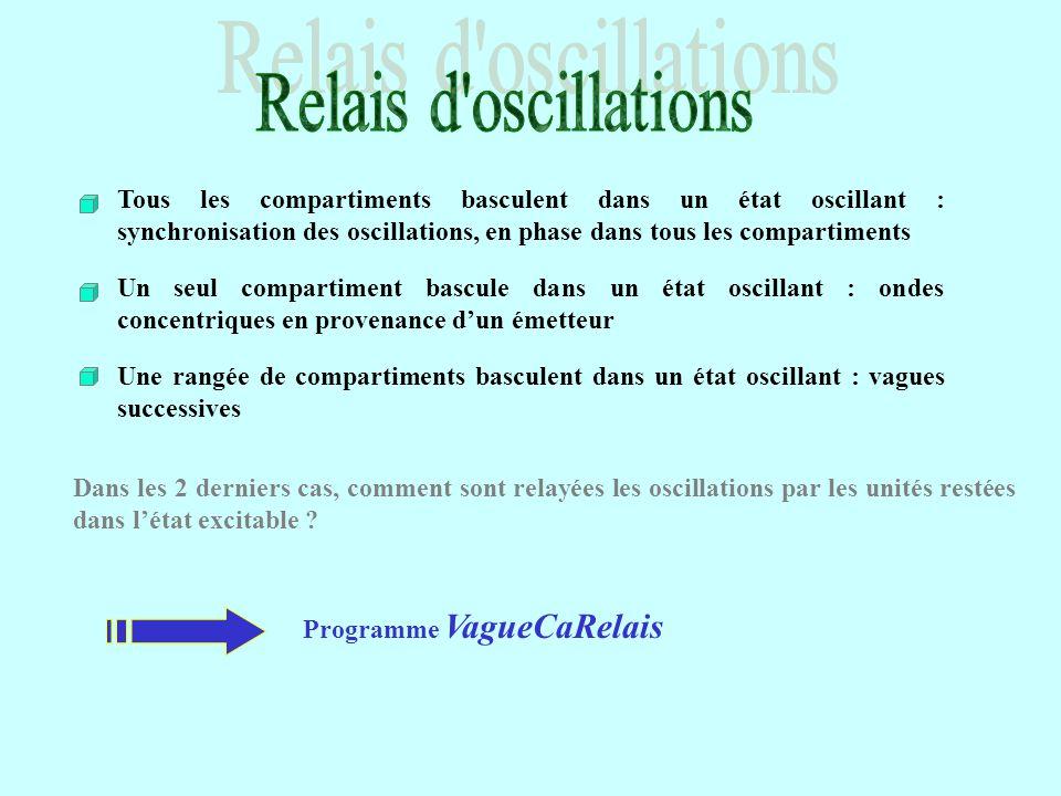 Tous les compartiments basculent dans un état oscillant : synchronisation des oscillations, en phase dans tous les compartiments Programme VagueCaRela