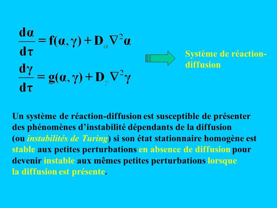 Un système de réaction-diffusion est susceptible de présenter des phénomènes d'instabilité dépendants de la diffusion (ou instabilités de Turing) si s