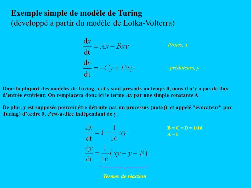Exemple simple de modèle de Turing (développé à partir du modèle de Lotka-Volterra) Proies, x prédateurs, y Dans la plupart des modèles de Turing, x e