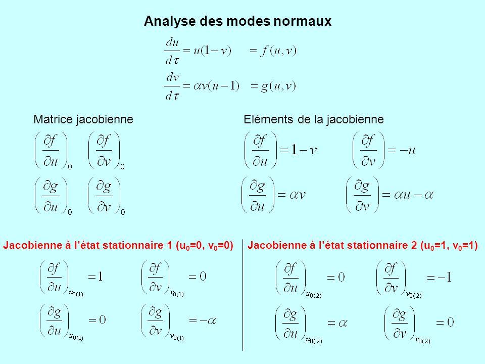 Analyse des modes normaux Jacobienne à l'état stationnaire 1 (u 0 =0, v 0 =0) Trace de la jacobienne : Déterminant de la jacobienne : Equation caractéristique : Discriminant de l'équation caractéristique : La constante  étant toujours positive,  est négatif, ce qui signifie que les deux racines R1 et R2 sont de signes contraires.
