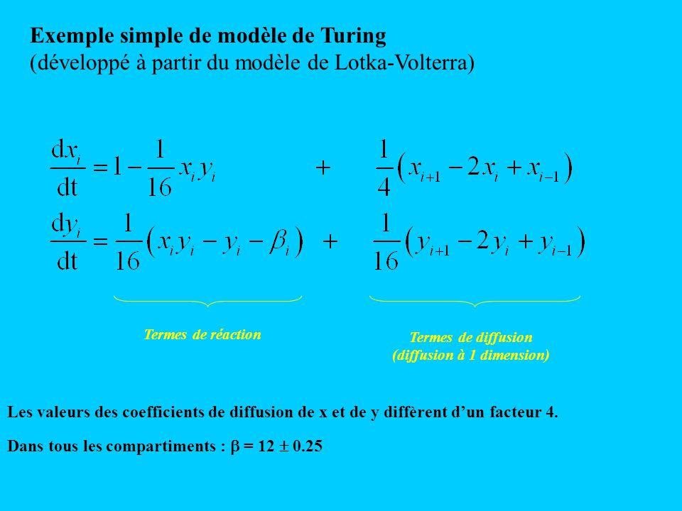 Exemple simple de modèle de Turing (développé à partir du modèle de Lotka-Volterra) Termes de réaction Termes de diffusion (diffusion à 1 dimension) L
