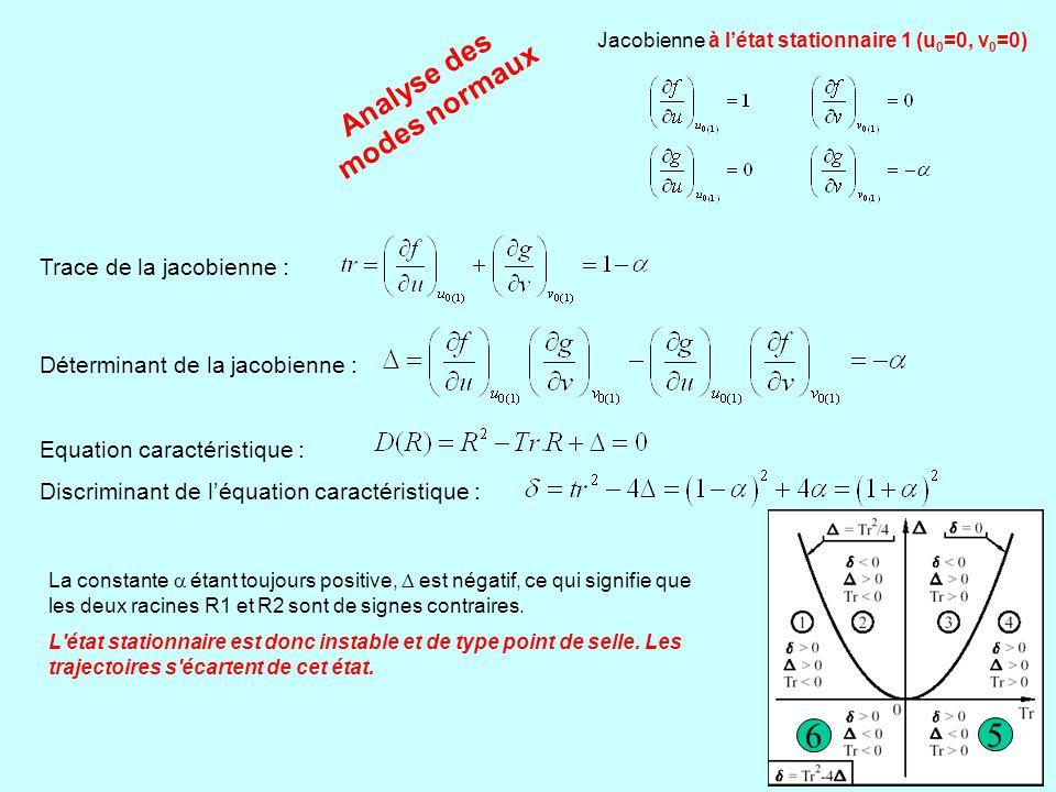 Analyse des modes normaux Jacobienne à l'état stationnaire 2 (u 0 =1, v 0 =1) Trace de la jacobienne : Déterminant de la jacobienne : Equation caractéristique : Discriminant de l'équation caractéristique : Le discriminant étant toujours négatif, l équation caractéristique admet deux racines toujours imaginaires.