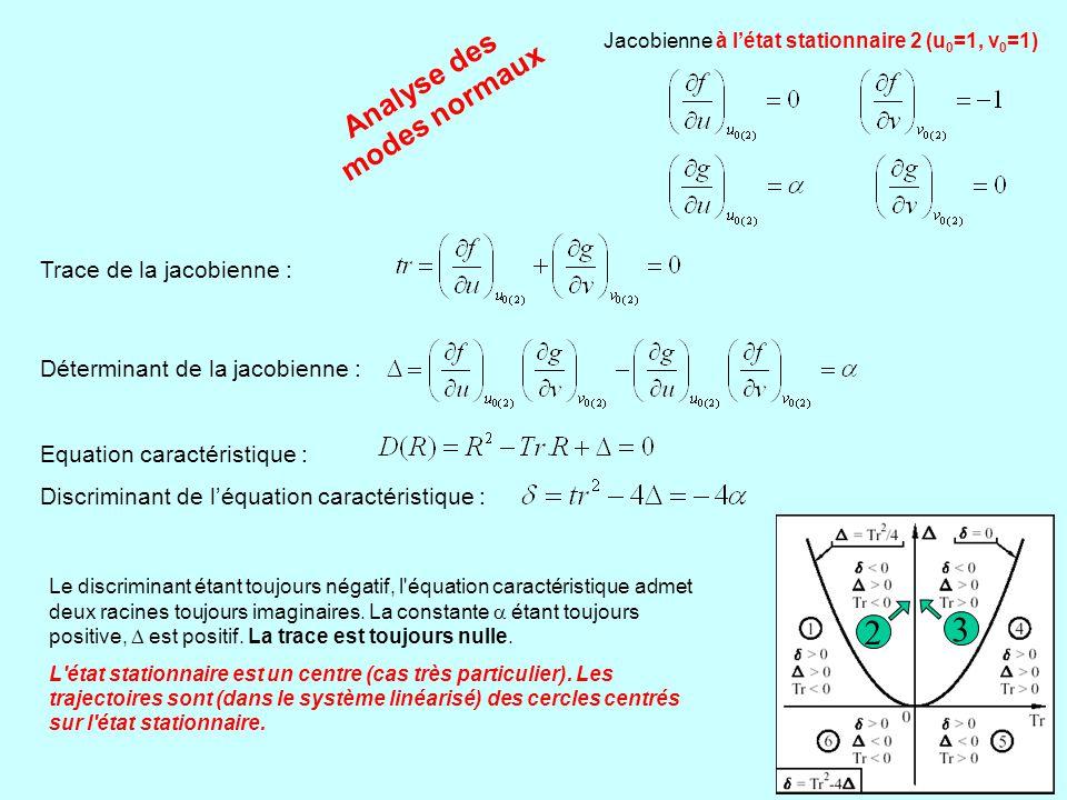 Analyse des modes normaux Jacobienne à l'état stationnaire 2 (u 0 =1, v 0 =1) Trace de la jacobienne : Déterminant de la jacobienne : Equation caracté
