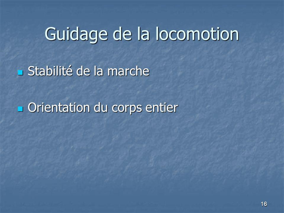 16 Guidage de la locomotion Stabilité de la marche Stabilité de la marche Orientation du corps entier Orientation du corps entier