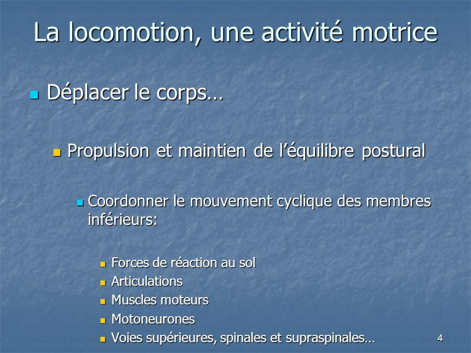 4 La locomotion, une activité motrice Déplacer le corps… Déplacer le corps… Propulsion et maintien de l'équilibre postural Propulsion et maintien de l