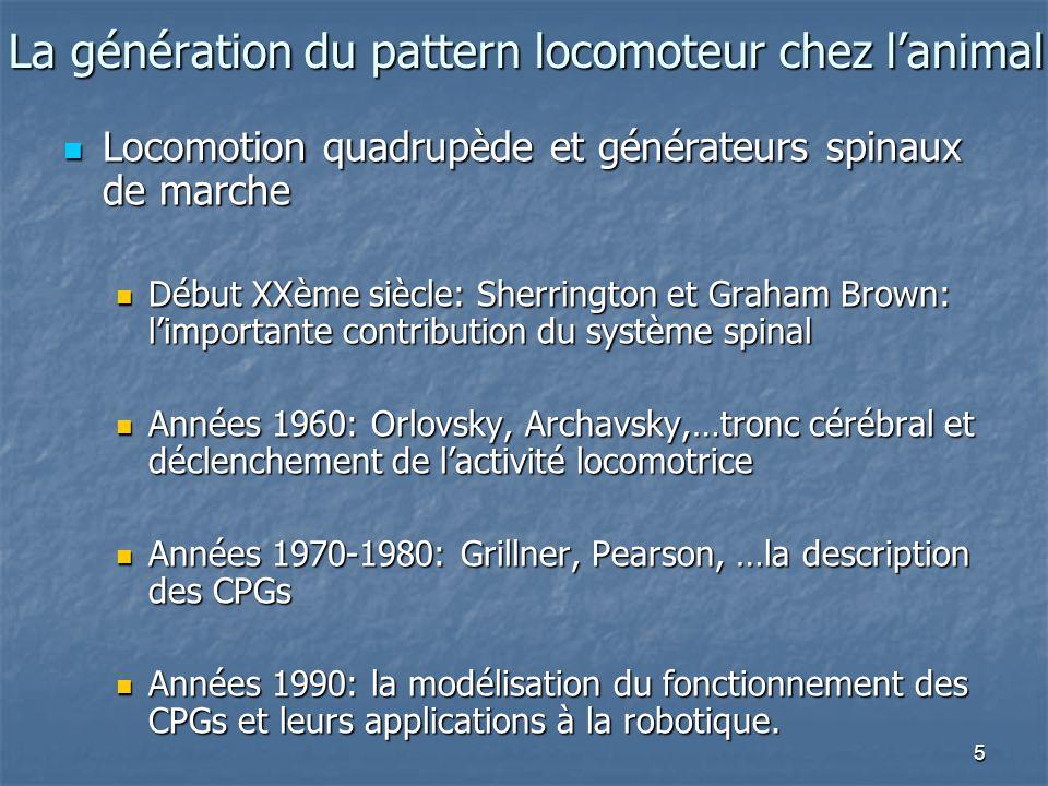 5 La génération du pattern locomoteur chez l'animal Locomotion quadrupède et générateurs spinaux de marche Locomotion quadrupède et générateurs spinau