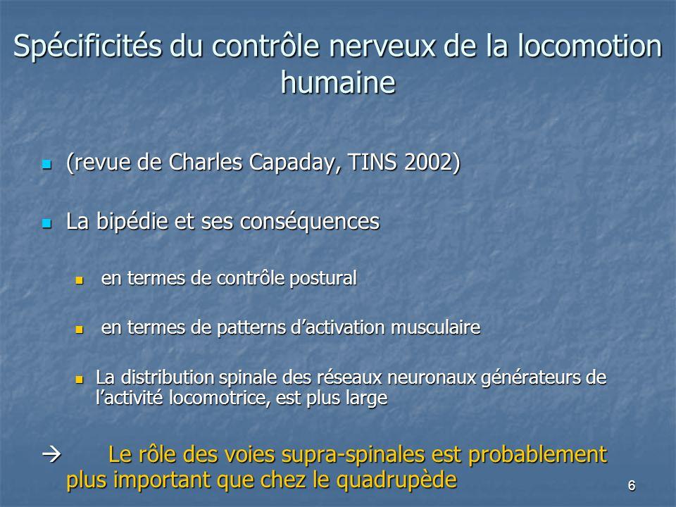 6 Spécificités du contrôle nerveux de la locomotion humaine (revue de Charles Capaday, TINS 2002) (revue de Charles Capaday, TINS 2002) La bipédie et