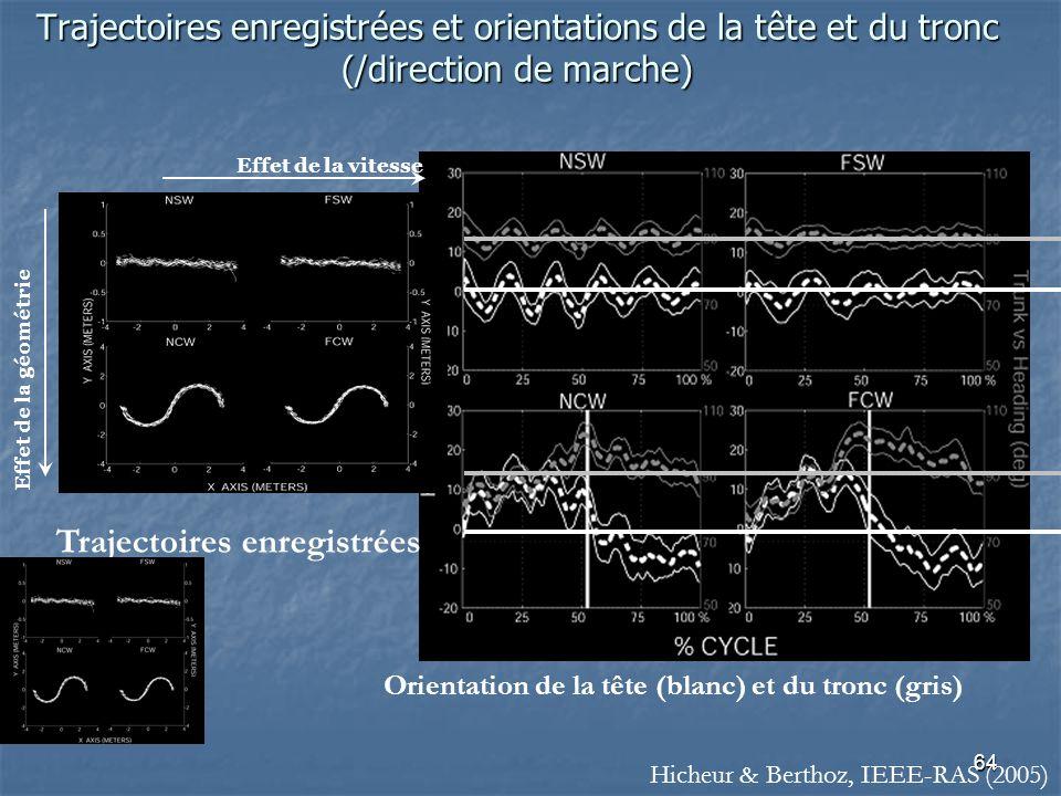 64 Trajectoires enregistrées et orientations de la tête et du tronc (/direction de marche) Orientation de la tête (blanc) et du tronc (gris) Trajectoires enregistrées Effet de la vitesse Effet de la géométrie Hicheur & Berthoz, IEEE-RAS (2005)
