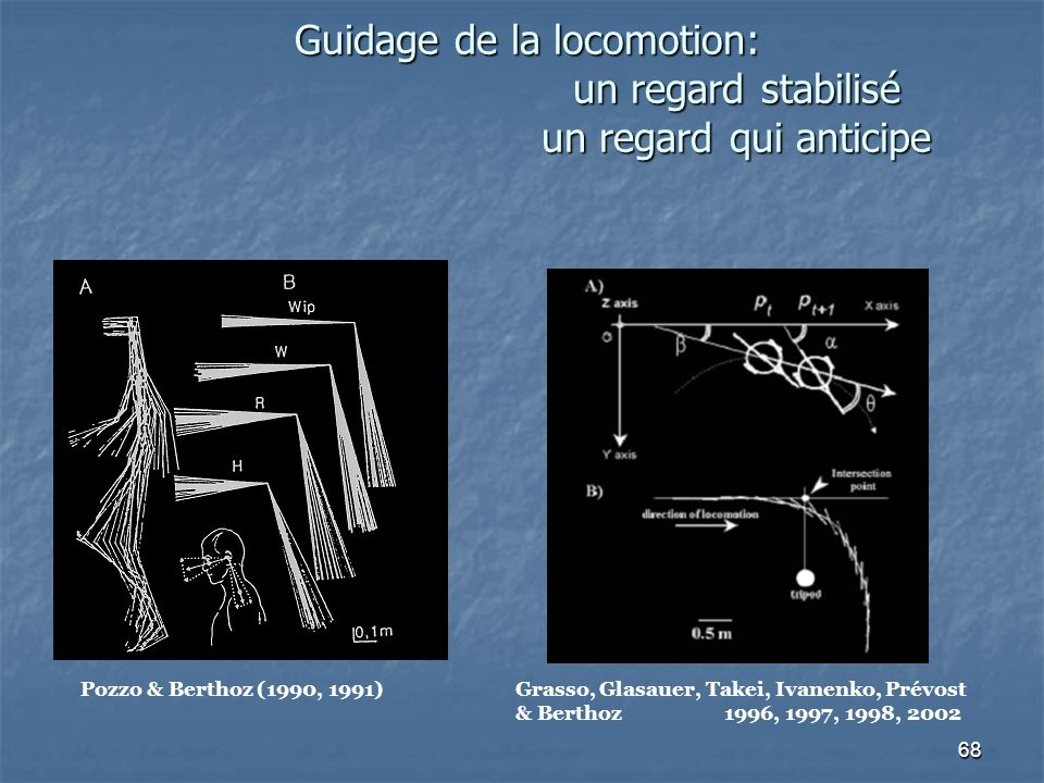 68 Guidage de la locomotion: un regard stabilisé un regard qui anticipe Pozzo & Berthoz (1990, 1991) Grasso, Glasauer, Takei, Ivanenko, Prévost & Berthoz1996, 1997, 1998, 2002
