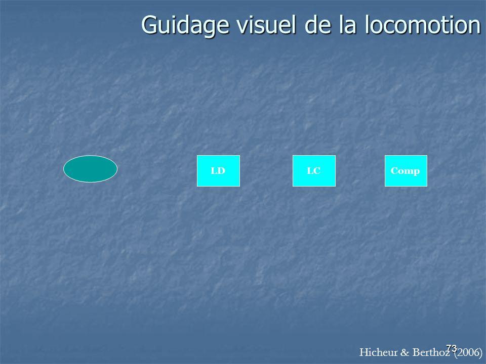 73 Guidage visuel de la locomotion CompLDLC Hicheur & Berthoz (2006)