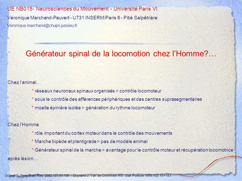 UE NB015- Neurosciences du Mouvement - Université Paris VI Véronique Marchand-Pauvert - U731 INSERM/Paris 6 - Pitié Salpêtrière Veronique.marchand@chu