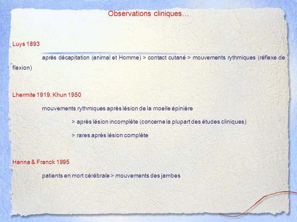 Observations cliniques… Luys 1893 après décapitation (animal et Homme) > contact cutané > mouvements rythmiques (réflexe de flexion) Lhermite 1919, Kh