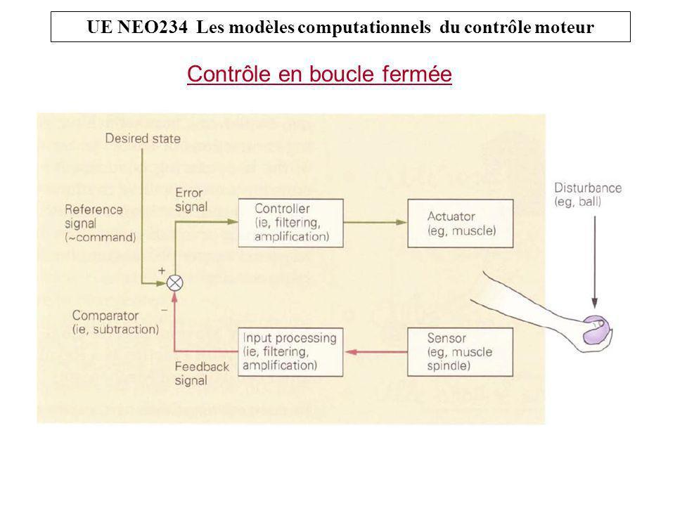 UE NEO234 Les modèles computationnels du contrôle moteur Contrôle en boucle fermée