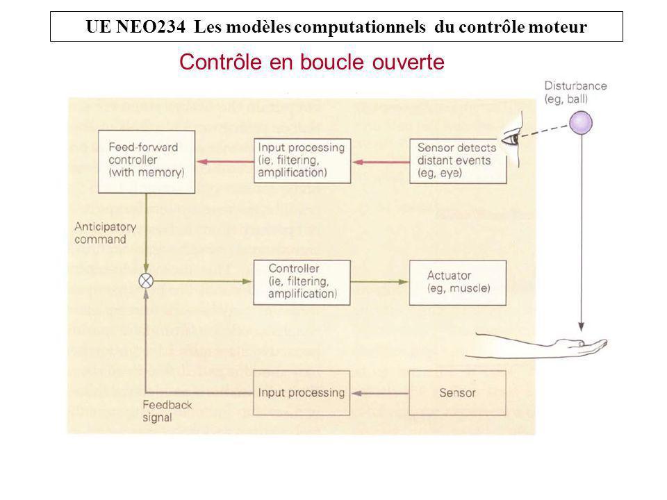 Contrôle en boucle ouverte UE NEO234 Les modèles computationnels du contrôle moteur