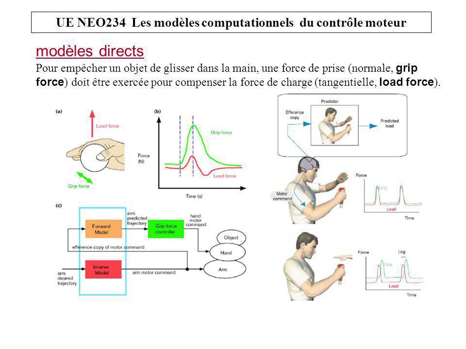 modèles directs UE NEO234 Les modèles computationnels du contrôle moteur Pour empêcher un objet de glisser dans la main, une force de prise (normale, grip force ) doit être exercée pour compenser la force de charge (tangentielle, load force ).
