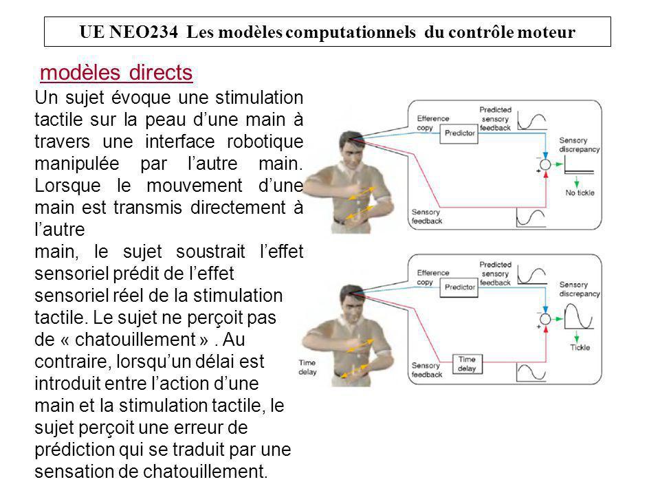 UE NEO234 Les modèles computationnels du contrôle moteur modèles directs Un sujet évoque une stimulation tactile sur la peau d'une main à travers une interface robotique manipulée par l'autre main.