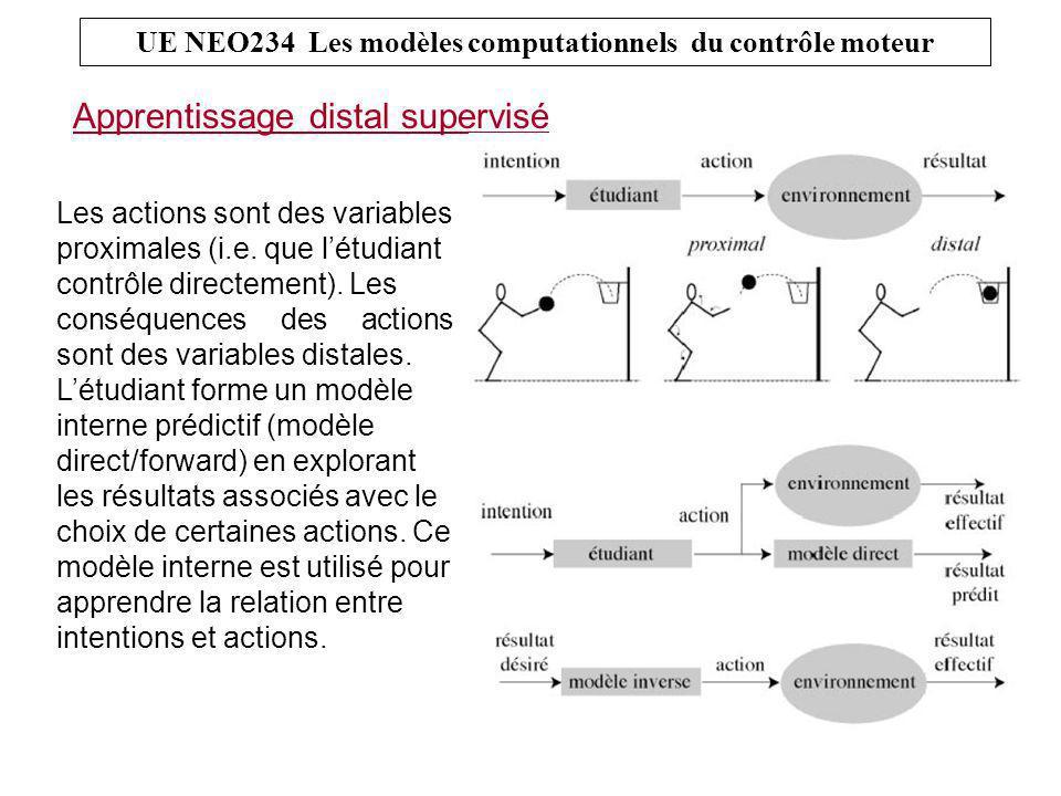 Apprentissage distal supervisé UE NEO234 Les modèles computationnels du contrôle moteur Les actions sont des variables proximales (i.e.