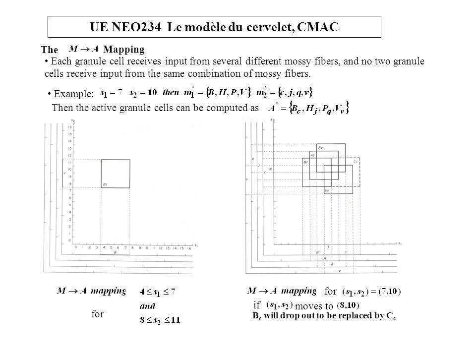 UE NEO234 Le modèle du cervelet, CMAC The Mapping for B c will drop out to be replaced by C c if moves to Each granule cell receives input from severa