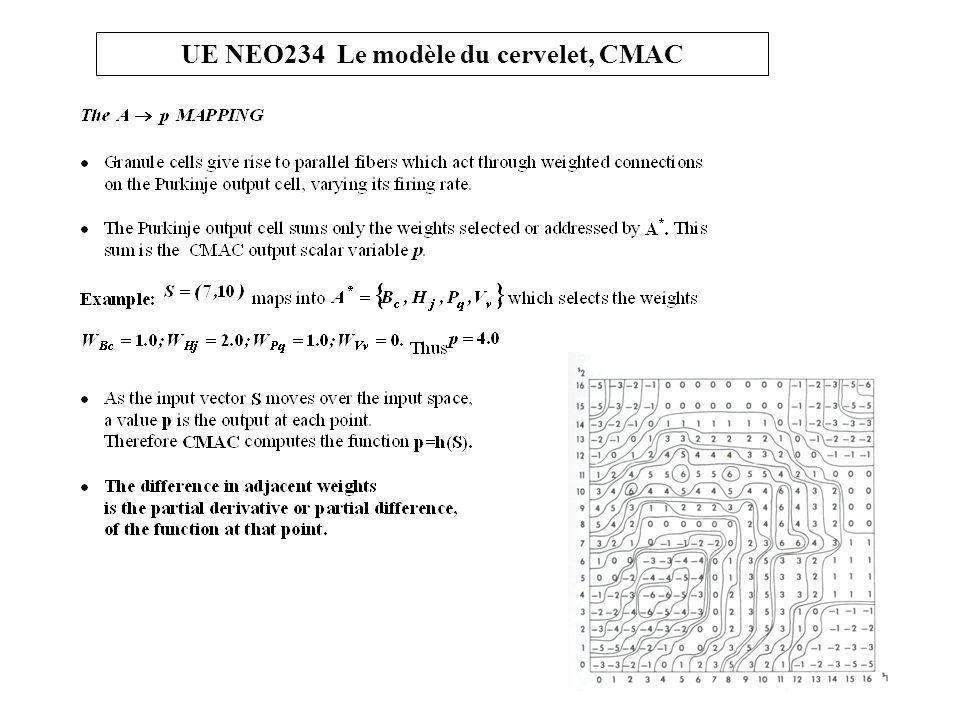 UE NEO234 Le modèle du cervelet, CMAC