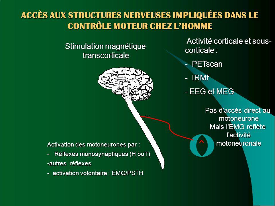ACCÈS AUX STRUCTURES NERVEUSES IMPLIQUÉES DANS LE CONTRÔLE MOTEUR CHEZ L'HOMME Activité corticale et sous- corticale : - PETscan - IRMf - EEG et MEG P