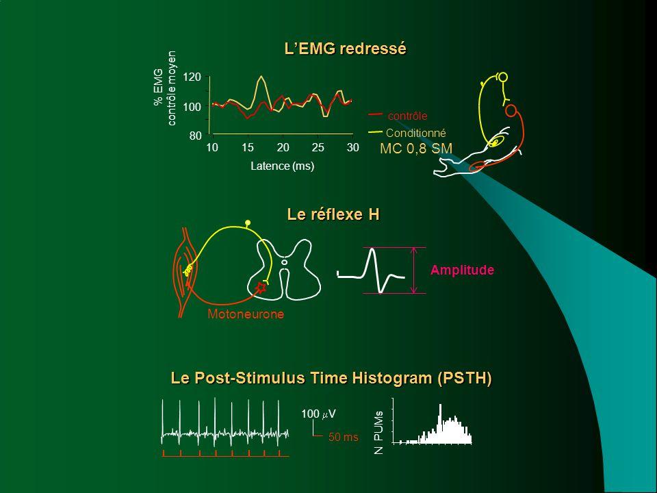 Le réflexe H Motoneurone Amplitude Le Post-Stimulus Time Histogram (PSTH) 100  V 50 ms N PUMs L'EMG redressé 1015202530 Latence (ms) % EMG contrôle m