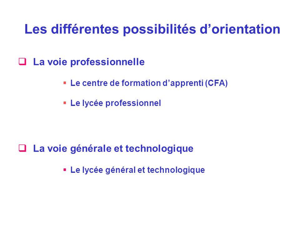 Les différentes possibilités d'orientation  La voie professionnelle  Le centre de formation d'apprenti (CFA)  Le lycée professionnel  La voie géné
