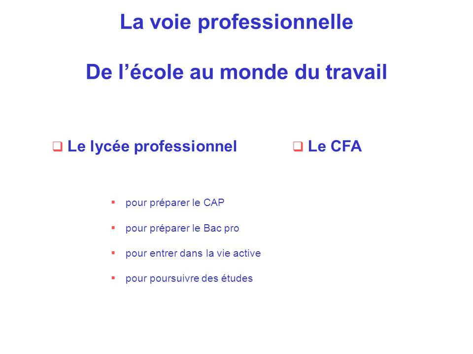 La voie professionnelle De l'école au monde du travail  Le CFA  pour préparer le CAP  pour préparer le Bac pro  pour entrer dans la vie active  p