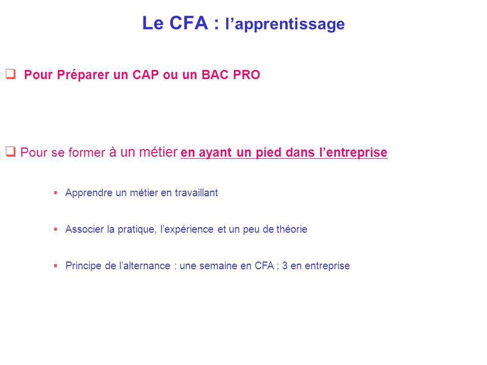 Le CFA : l'apprentissage  Pour se former à un métier en ayant un pied dans l'entreprise  Apprendre un métier en travaillant  Associer la pratique,