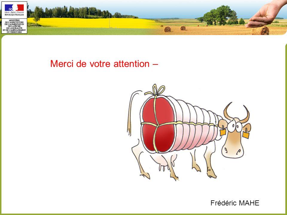 Merci de votre attention – Frédéric MAHE