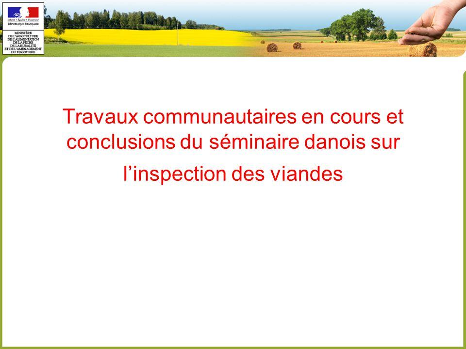 Travaux communautaires en cours et conclusions du séminaire danois sur l'inspection des viandes