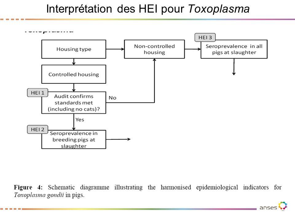 Interprétation des HEI pour Toxoplasma