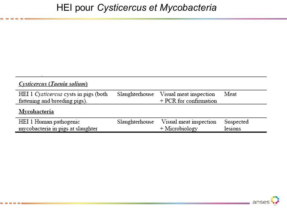 HEI pour Cysticercus et Mycobacteria