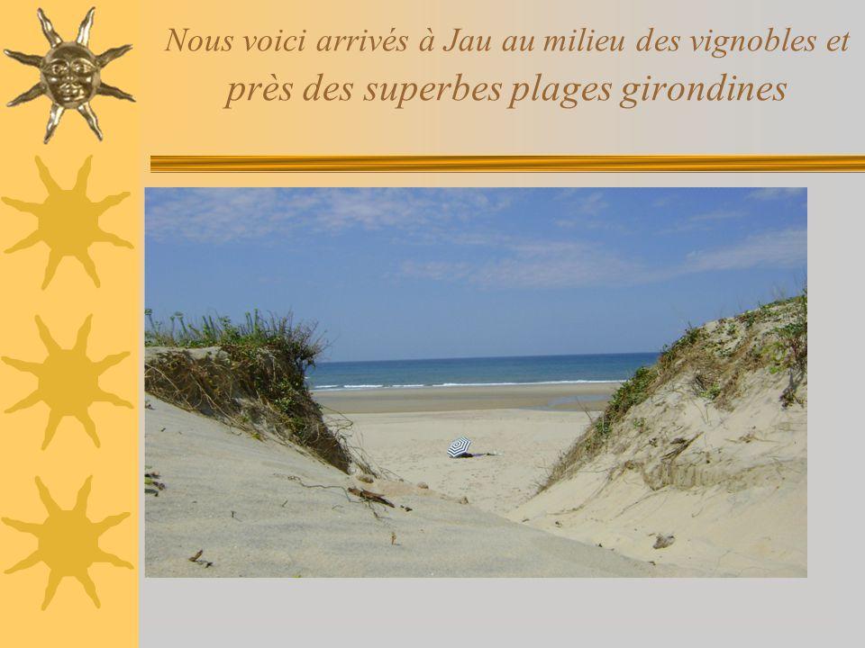 Nous voici arrivés à Jau au milieu des vignobles et près des superbes plages girondines