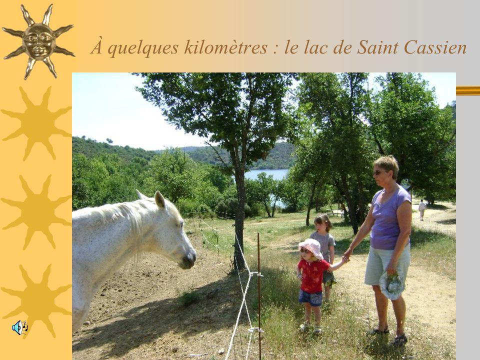 À quelques kilomètres : le lac de Saint Cassien