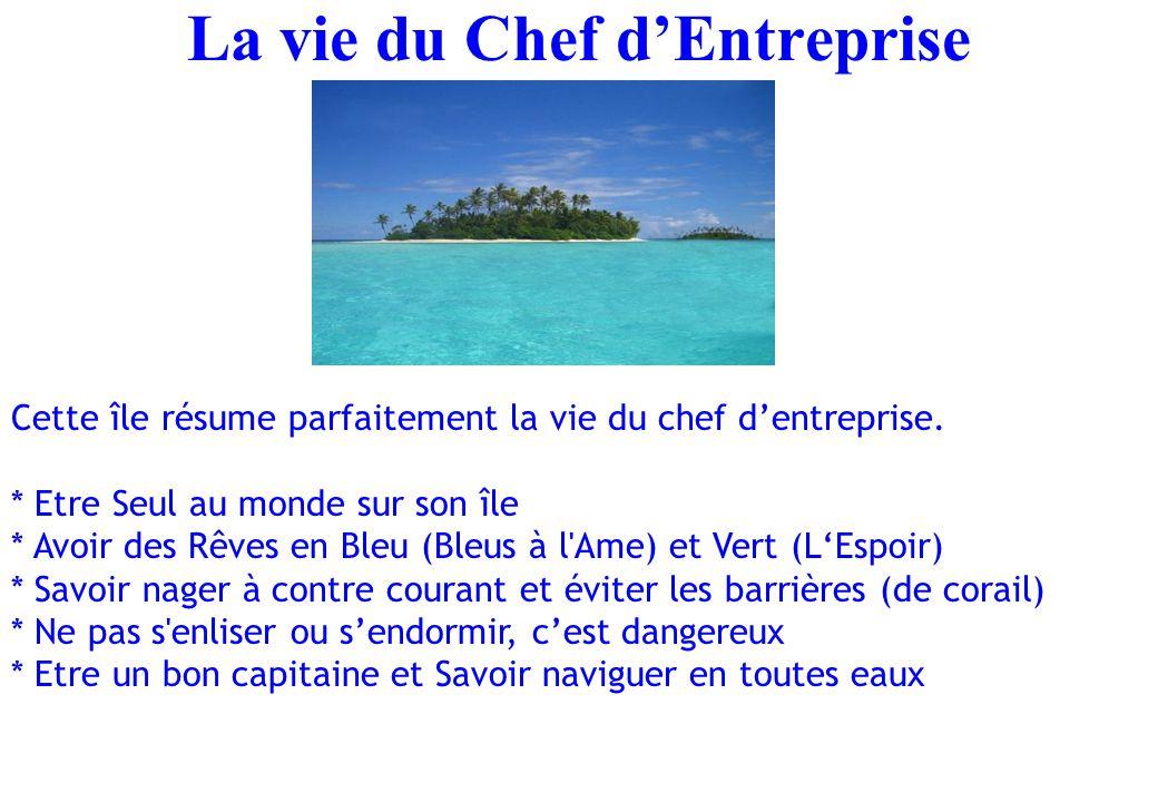 La vie du Chef d'Entreprise Cette île résume parfaitement la vie du chef d'entreprise. * Etre Seul au monde sur son île * Avoir des Rêves en Bleu (Ble