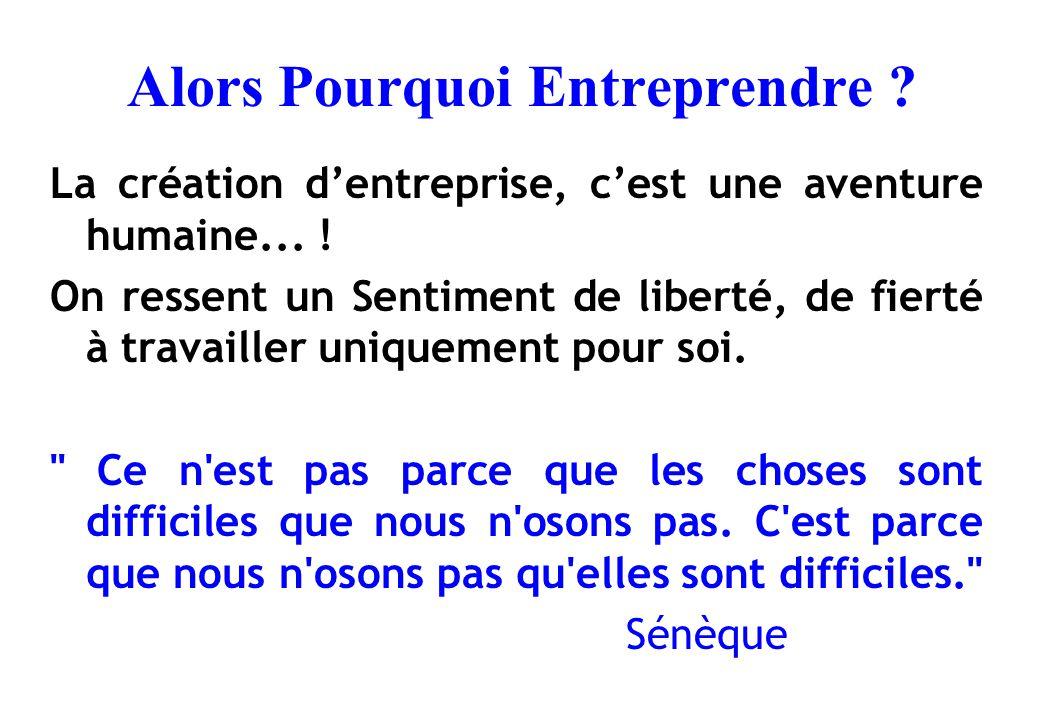 Alors Pourquoi Entreprendre ? La création d'entreprise, c'est une aventure humaine... ! On ressent un Sentiment de liberté, de fierté à travailler uni