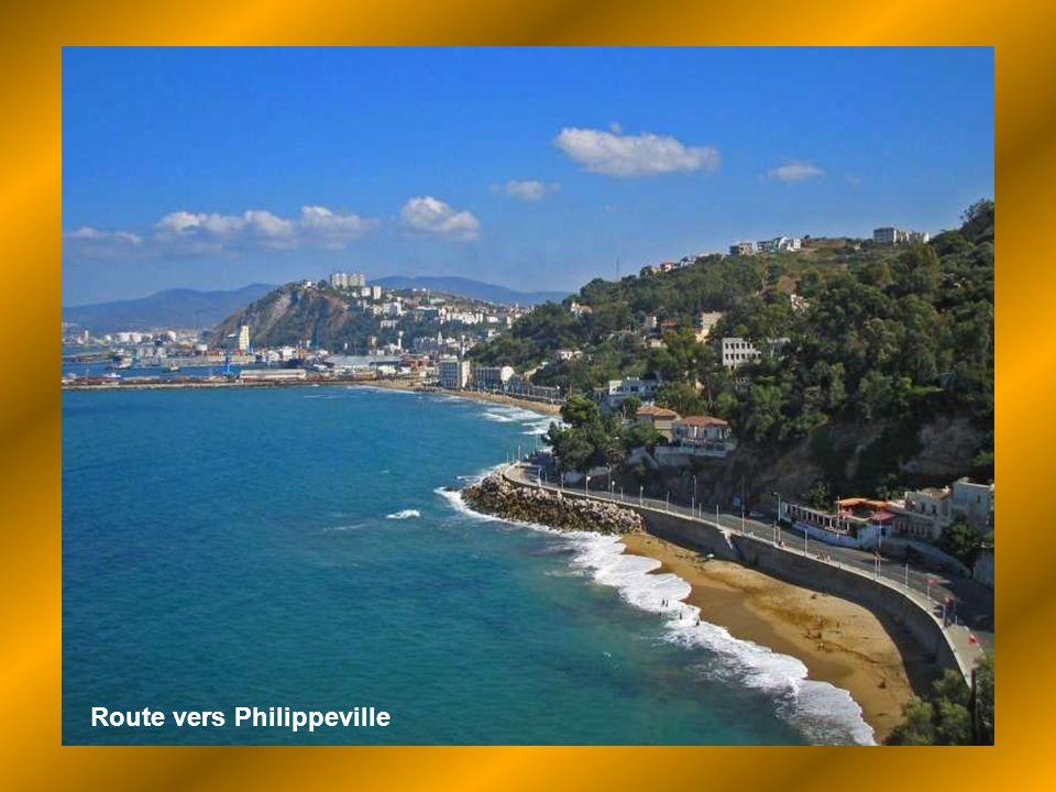 Algérie, terre de mes pères, Où je suis née et où j'ai grandi, Je t'ai gardée dans mon cœur blottie, Cachée là pour ma vie entière ! 1962, presqu' hie