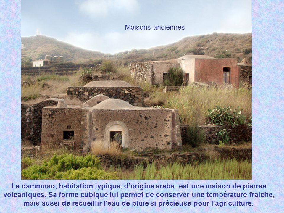 «…. L'île de Pantelleria, ancienne île de Calypso, délicieuse encore par sa végétation africaine et la fraîcheur de ses vallées et de ses eaux » Alpho
