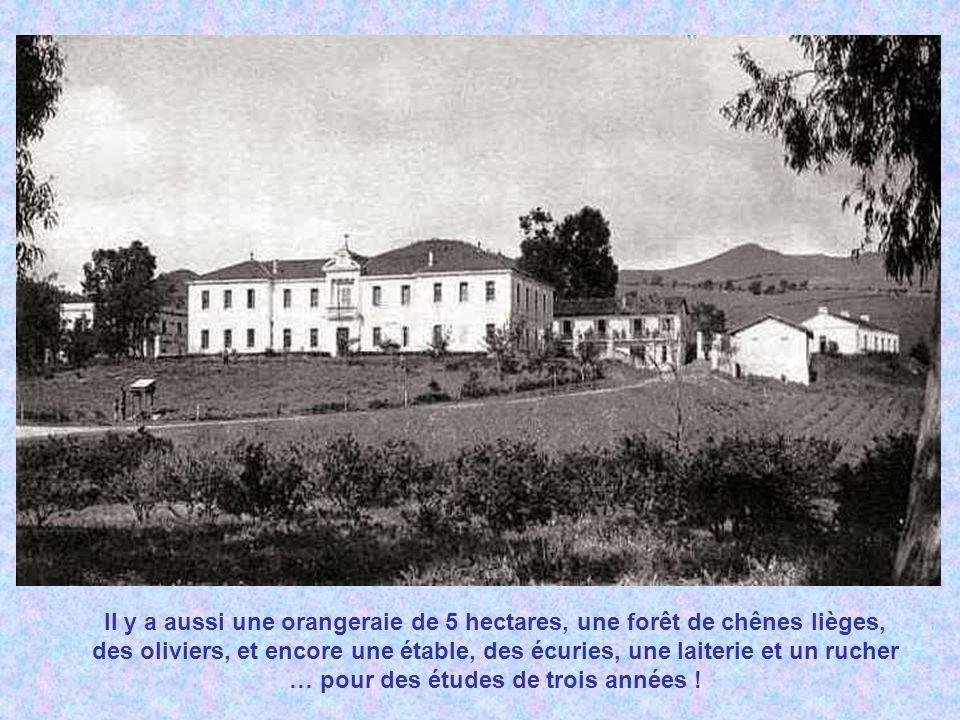 En 1935 elle contient 2500 arbres fruitiers, 2 hectares de vigne à raisin de table avec 22 cépages différents et 12 hectares de vigne à raisin de cuve