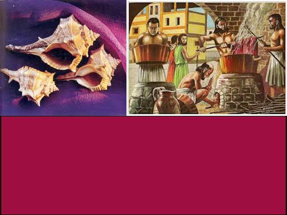 www.themegallery.comCompany Logo Magon, était l'auteur d'un traité d'agriculture en 28 volumes que les romains n'avaient pas manqué de traduire après la 3eme Guerre Punique.