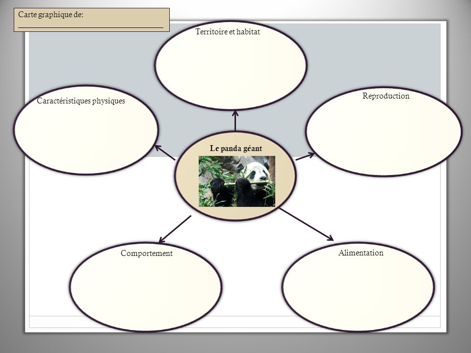 Le panda géant Carte graphique de: _____________________________________ Territoire et habitat Reproduction Alimentation Comportement Caractéristiques