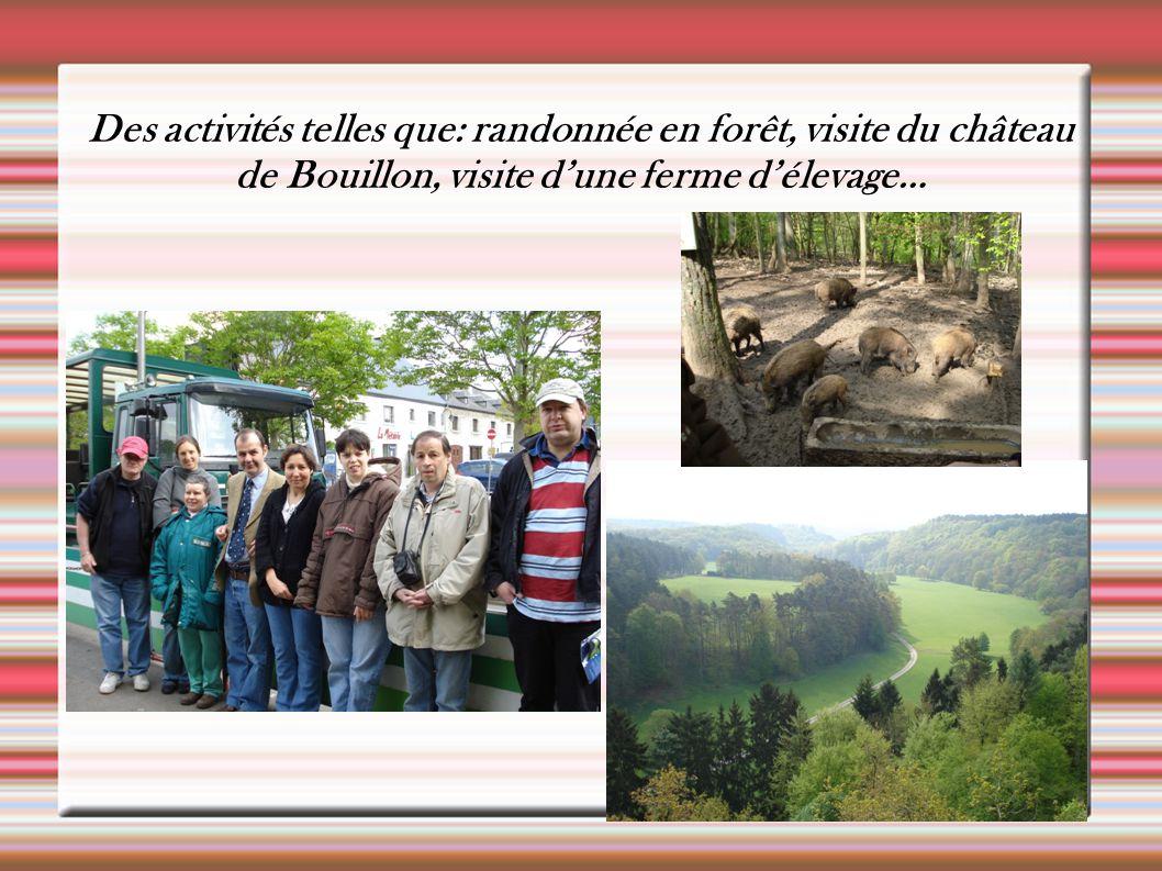 Des activités telles que: randonnée en forêt, visite du château de Bouillon, visite d'une ferme d'élevage…