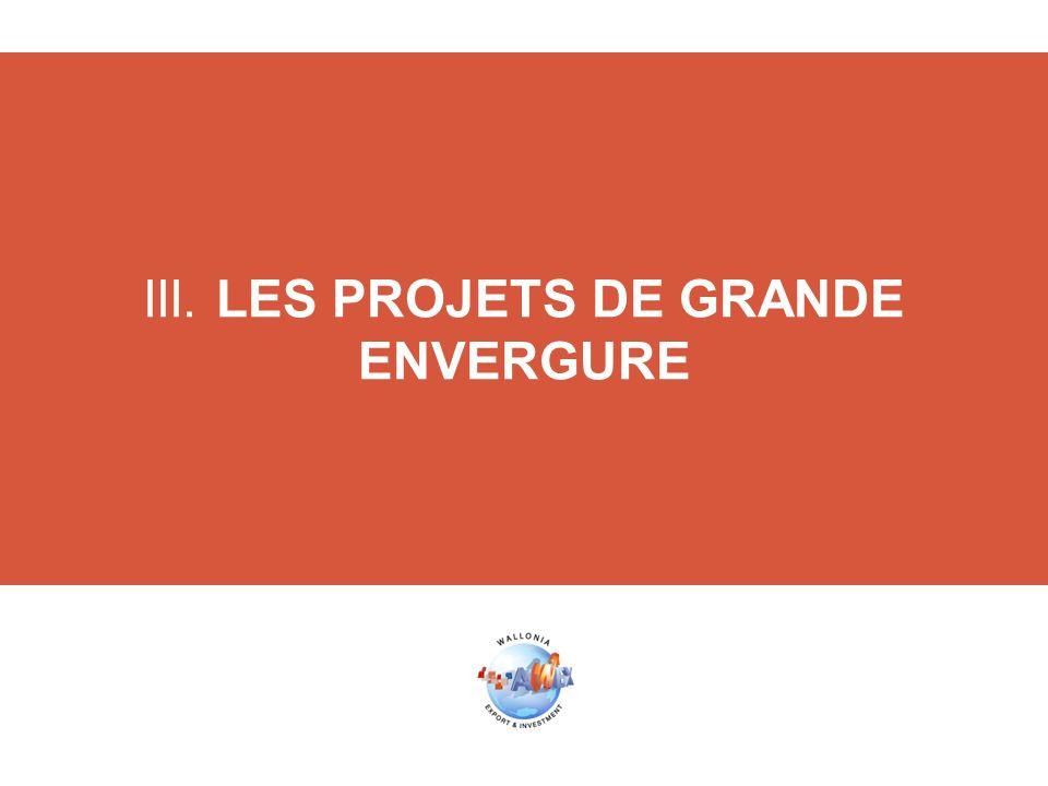 III. LES PROJETS DE GRANDE ENVERGURE