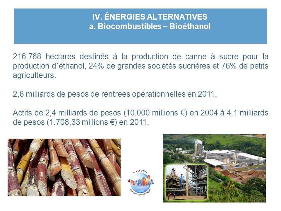 IV. ÉNERGIES ALTERNATIVES a. Biocombustibles – Bioéthanol 216.768 hectares destinés à la production de canne à sucre pour la production d´éthanol, 24%