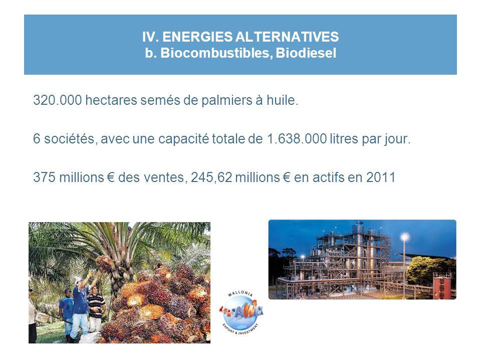 IV. ENERGIES ALTERNATIVES b. Biocombustibles, Biodiesel 320.000 hectares semés de palmiers à huile. 6 sociétés, avec une capacité totale de 1.638.000