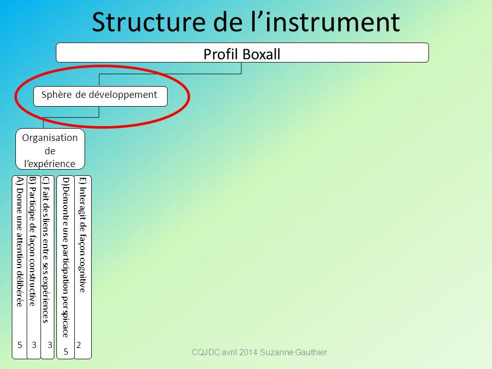 Structure de l'instrument Profil Boxall Sphère de développement Organisation de l'expérience A ) Donne une attention délibérée B) Participe de façon c