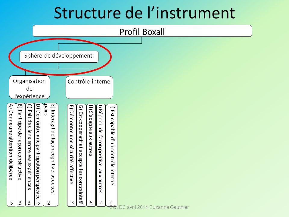 Structure de l'instrument Profil Boxall Sphère de développement Organisation de l'expérience Contrôle interne A) Donne une attention délibérée B) Part