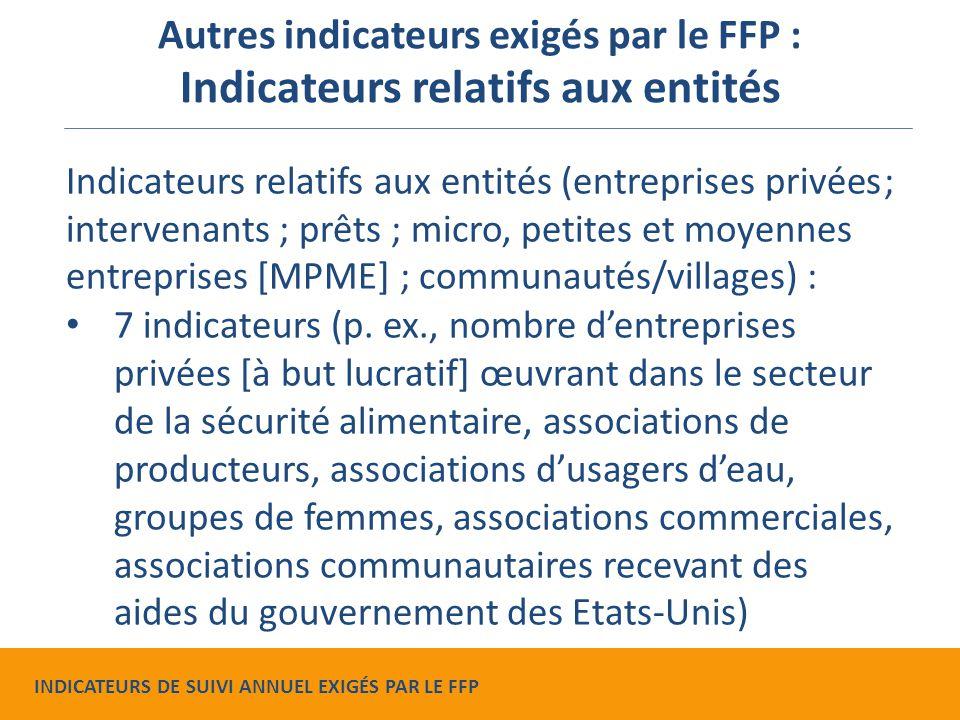 Indicateurs relatifs aux entités (entreprises privées ; intervenants ; prêts ; micro, petites et moyennes entreprises [MPME] ; communautés/villages) : 7 indicateurs (p.