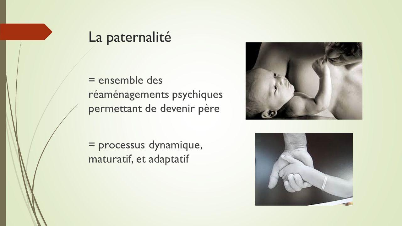 La paternalité = ensemble des réaménagements psychiques permettant de devenir père = processus dynamique, maturatif, et adaptatif